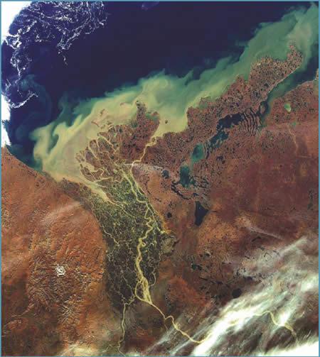 Delta do rio Mackenzie River - Canadá. Imagem ENVISAT/MERIS Setembro  2009. FonteL http://www.dfo-mpo.gc.ca/Science/Publications/ipy-api/index-eng.html